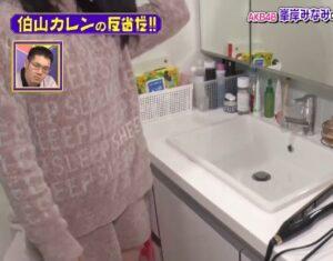 峯岸みなみの自宅の洗面所画像