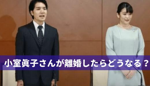 小室眞子さんは離婚したらどうなる?再婚するまで小室姓のままって本当?